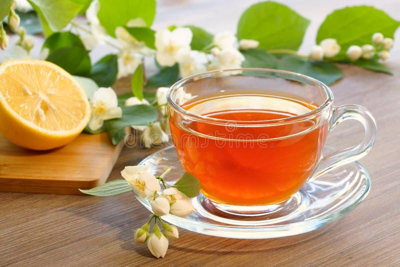 Tè con il limone ed i rami di un gelsomino di fioritura fotografia stock libera da diritti