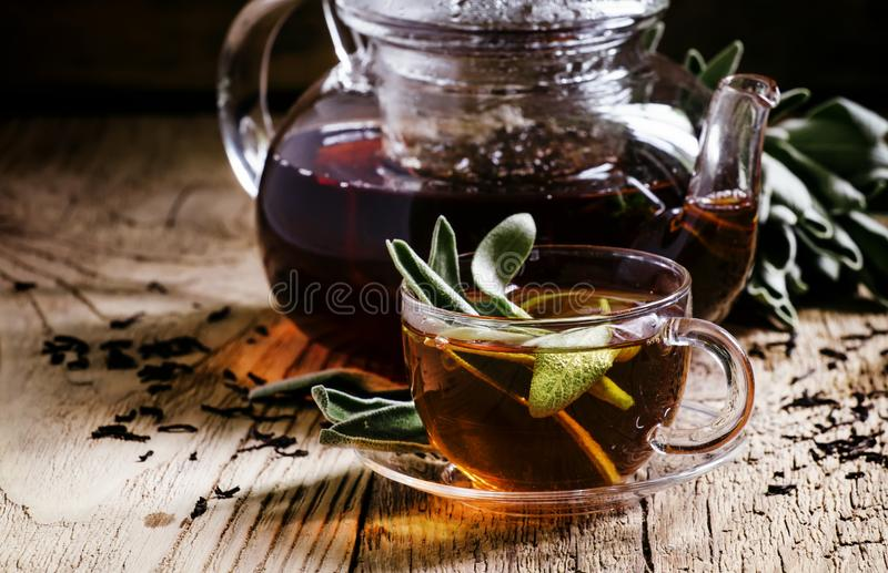Tè curativo con salvia, immagine tonificata scura, fuoco selettivo immagini stock libere da diritti
