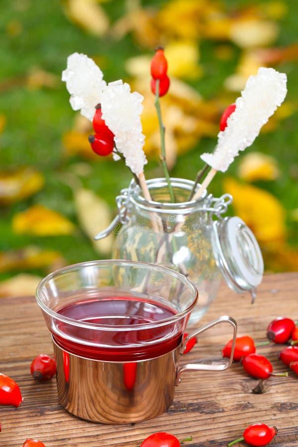 Tè del cinorrodonte sulla tavola del giardino immagini stock libere da diritti