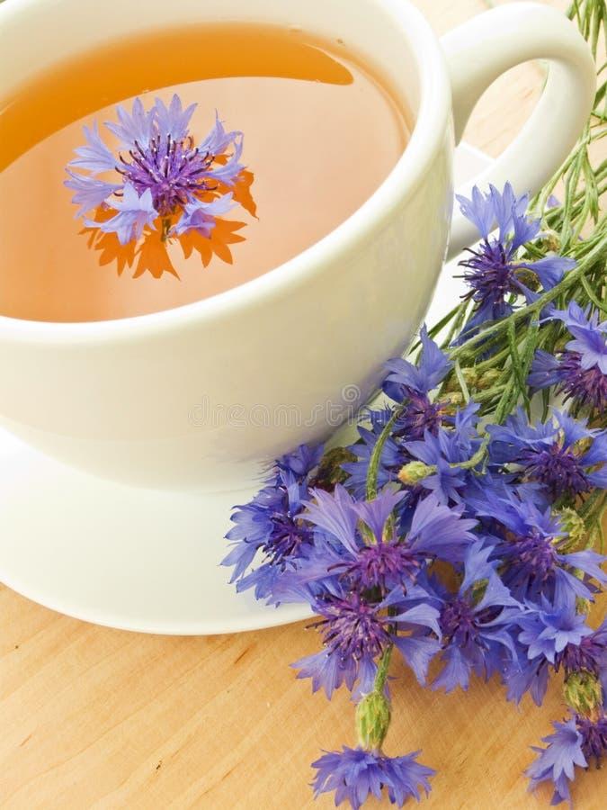 Tè del Cornflower fotografia stock