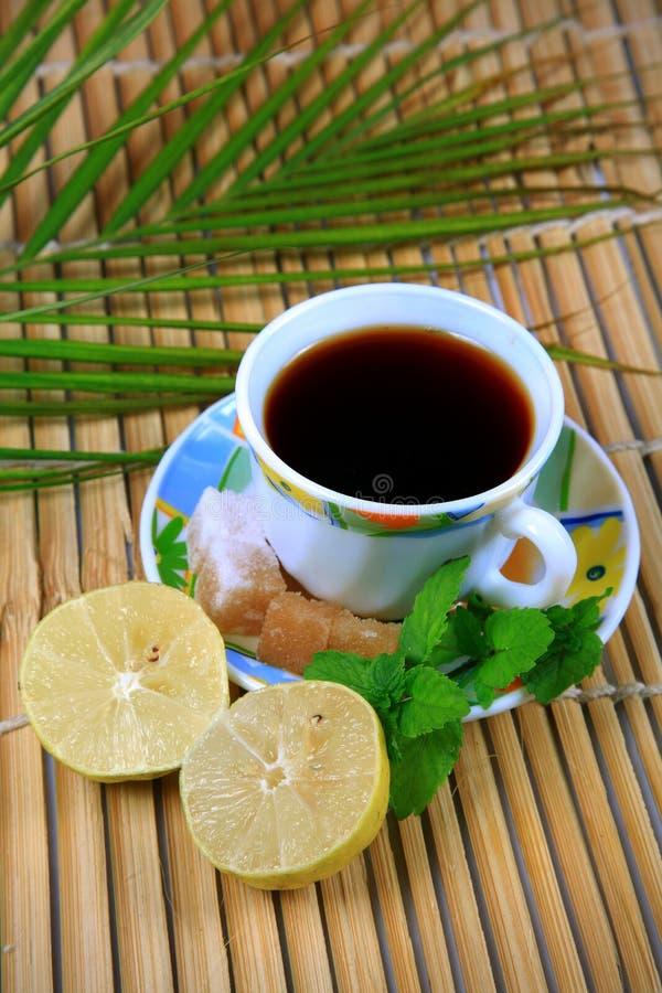 Tè del limone e della menta fotografia stock