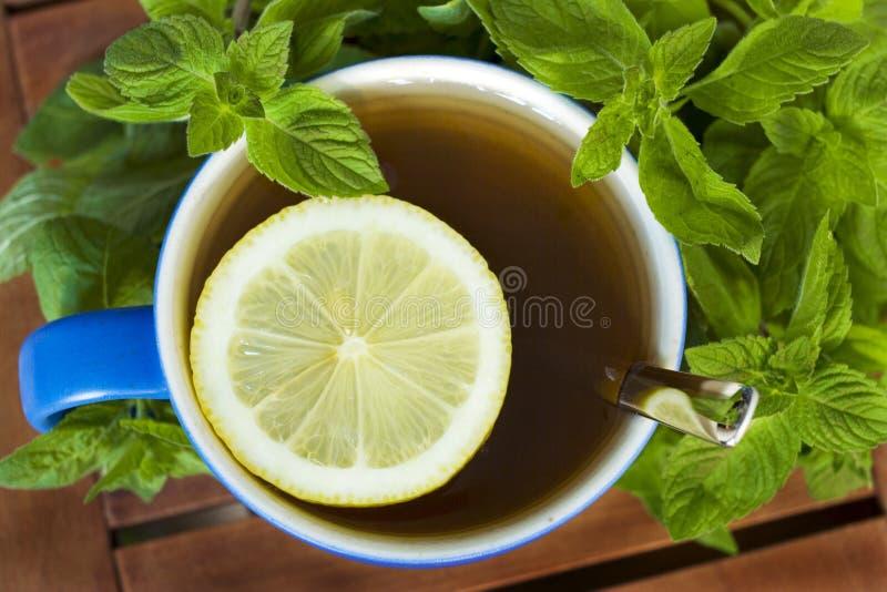 Tè della menta con il limone. fotografie stock