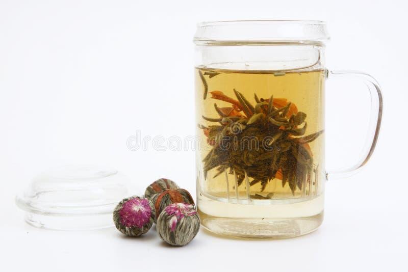 Tè di erbe con il fiore del tè in tazza di vetro immagine stock