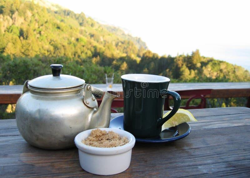 Download Tè di montagna immagine stock. Immagine di zucchero, teiera - 207199