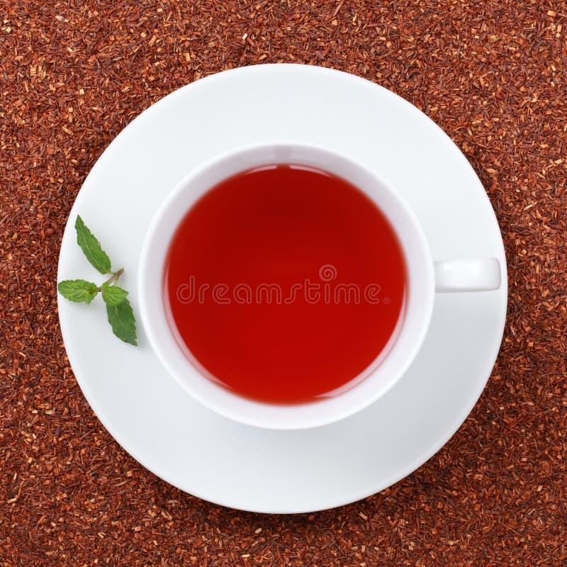 Tè di Rooibos in una tazza fotografia stock libera da diritti