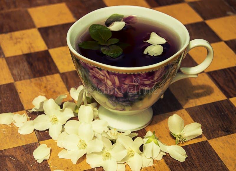 Tè e menta del gelsomino immagine stock libera da diritti