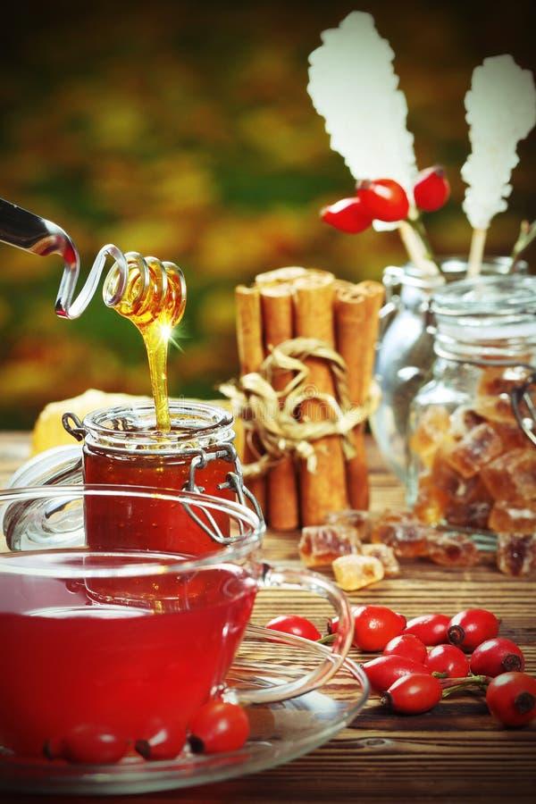 Tè e miele del cinorrodonte fotografia stock