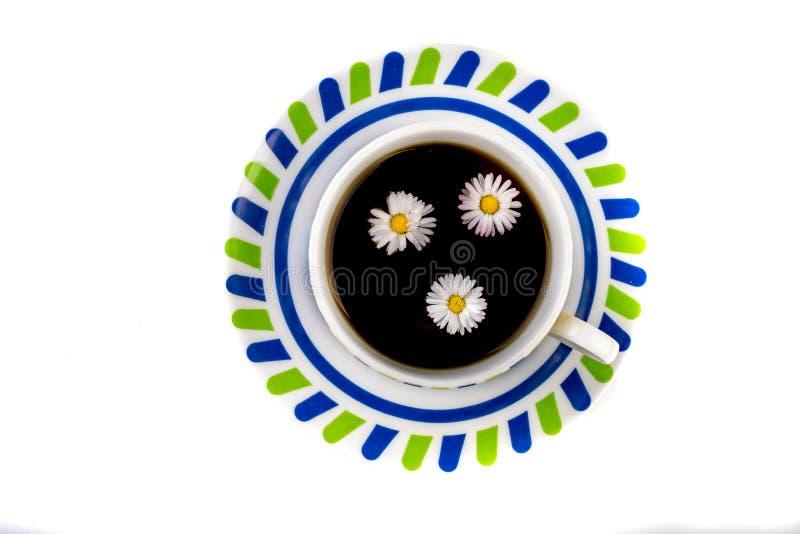 Tè fresco saporito con un fiore di galleggiamento Una tazza della bevanda nutriente su un tavolo da cucina di legno fotografie stock libere da diritti