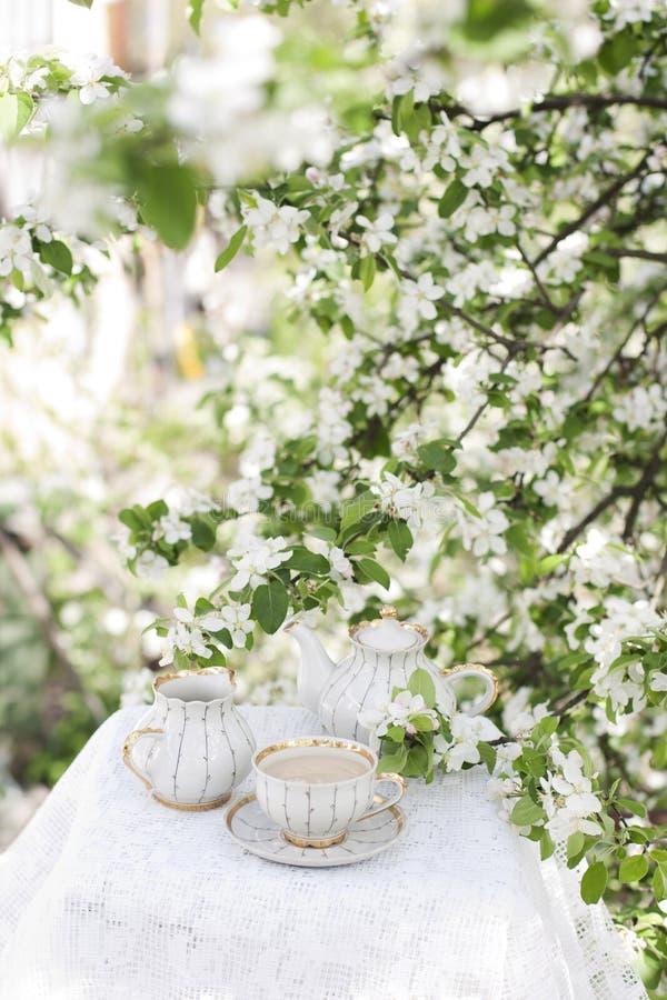 Tè nel giardino sbocciante immagini stock