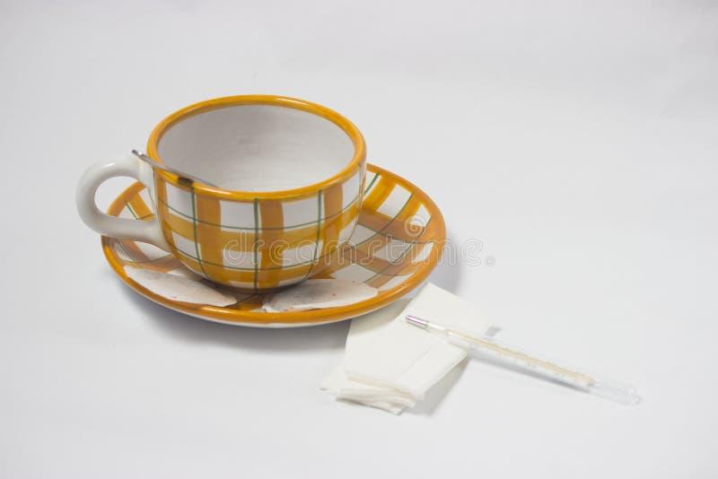 Tè per freddezza fotografia stock libera da diritti