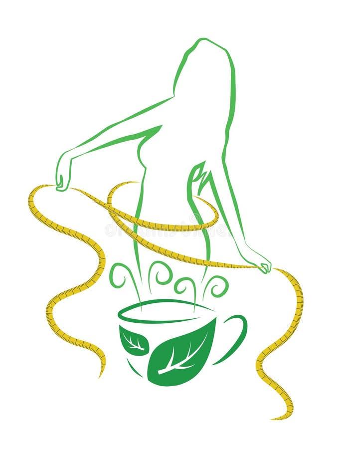 Tè per perdita di peso illustrazione vettoriale