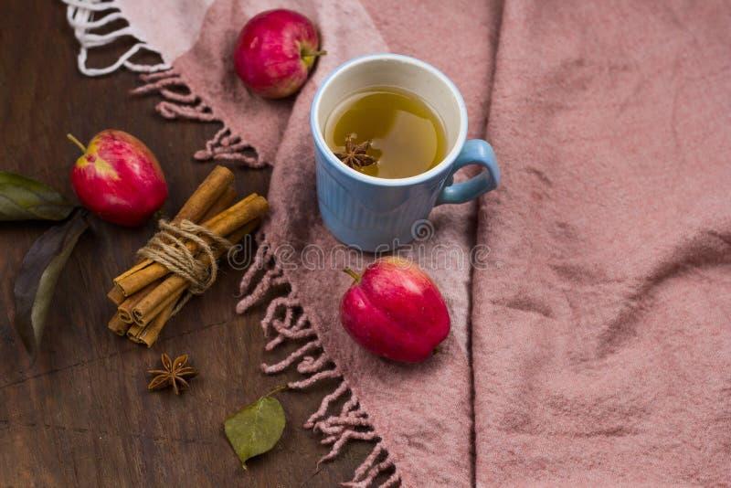 tè piccante caldo della mela fotografia stock libera da diritti