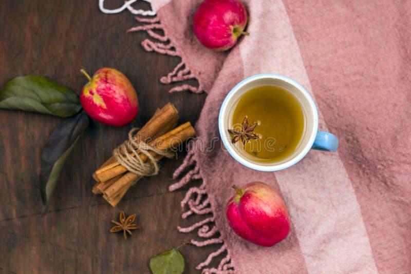 tè piccante caldo della mela immagini stock libere da diritti