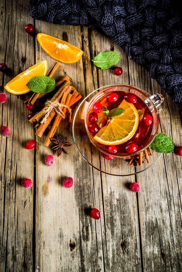 Tè piccante del mirtillo rosso immagine stock libera da diritti