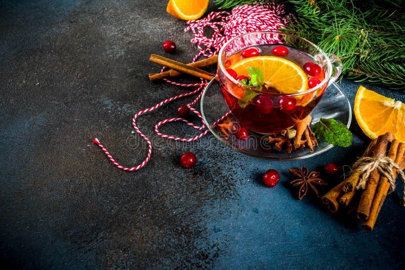 Tè piccante del mirtillo rosso fotografia stock