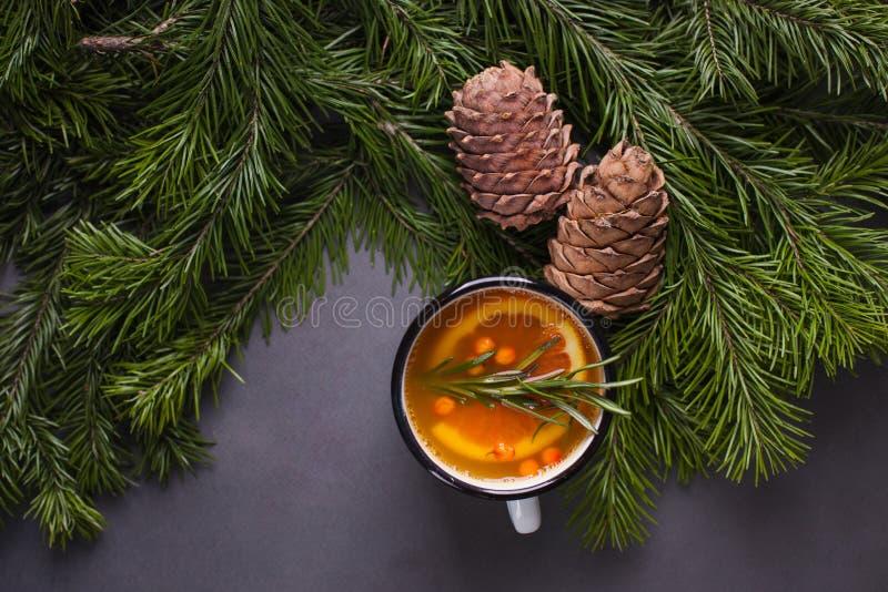 Tè piccante dell'agrume, rami del ramo e coni del cedro su un fondo scuro - fondo di inverno, bevanda di riscaldamento per calore fotografie stock