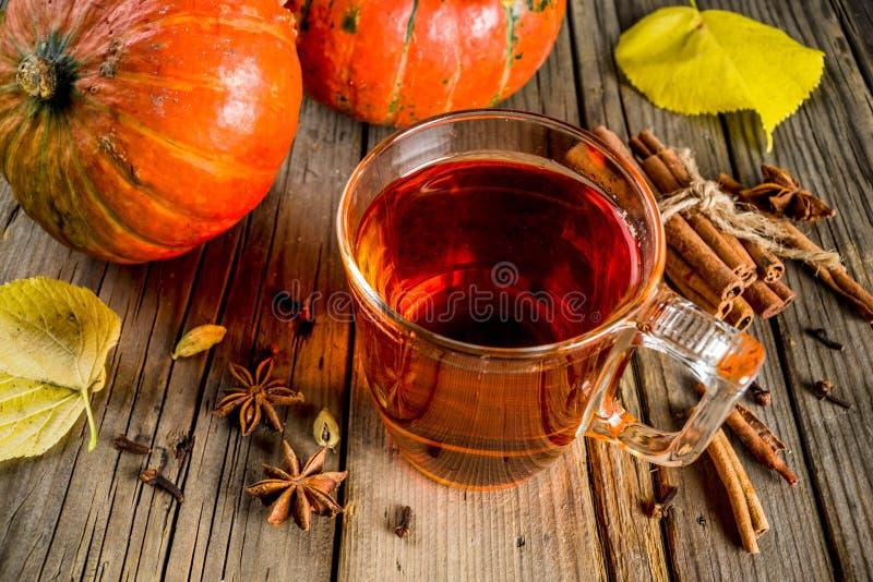 Tè piccante della zucca fotografia stock