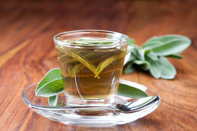 Tè prudente in tazza da the trasparente, con la foglia fresca intorno, immagine stock
