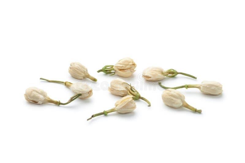 tè secco dei fiori del gelsomino fotografia stock libera da diritti