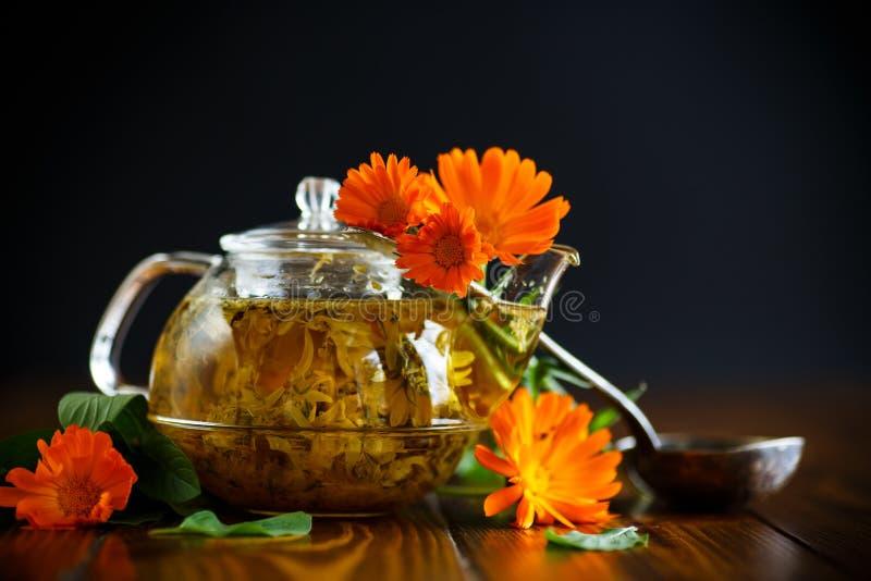 Tè terapeutico dai fiori della calendula immagini stock libere da diritti