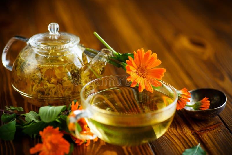 Tè terapeutico dai fiori della calendula fotografie stock