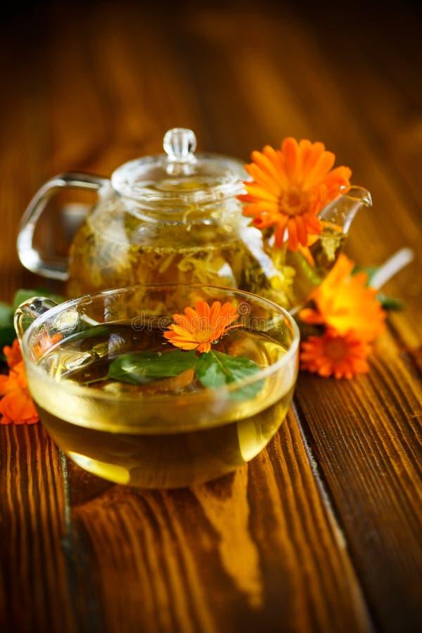 Tè terapeutico dai fiori della calendula fotografia stock
