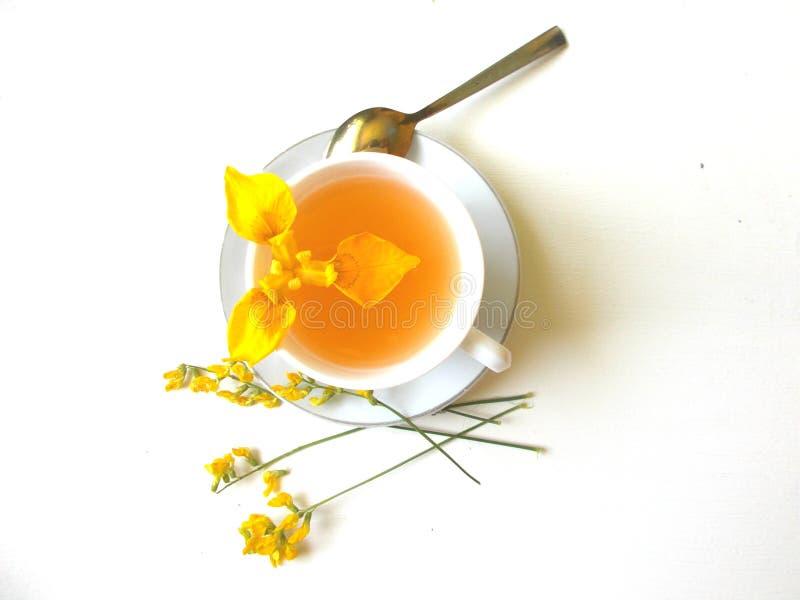 Tè in una tazza bianca, con i fiori rosa fotografia stock libera da diritti