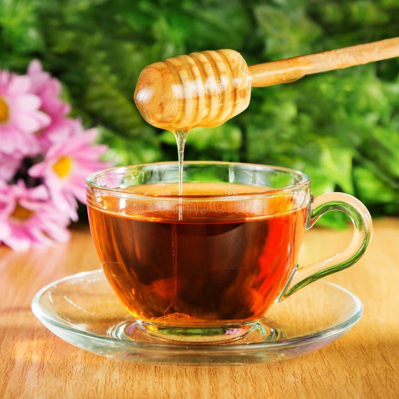 Tè utile con miele su un fondo fotografia stock