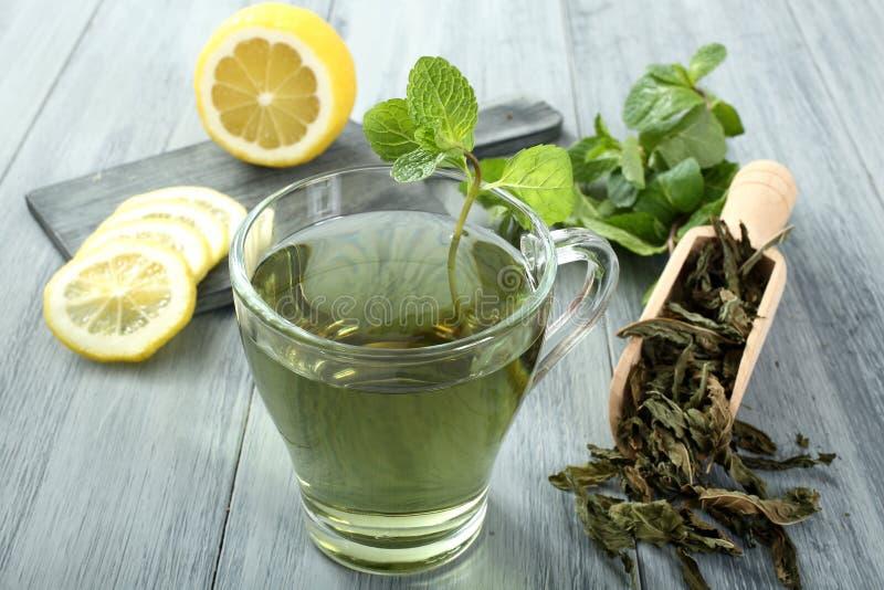 Tè verde fotografia stock