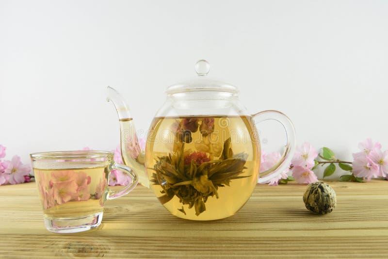 Tè verde con la fioritura del fiore dentro una teiera di vetro immagini stock
