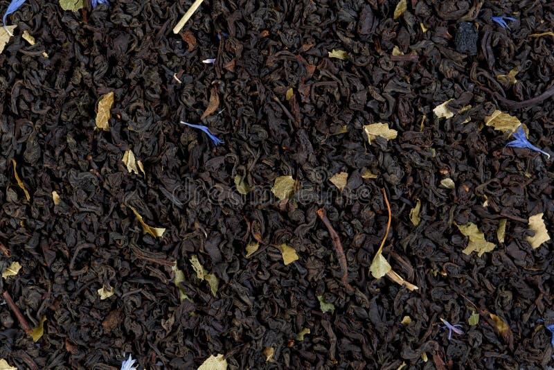 Tè verde con le more ed i mirtilli, petali a del fiordaliso immagini stock libere da diritti