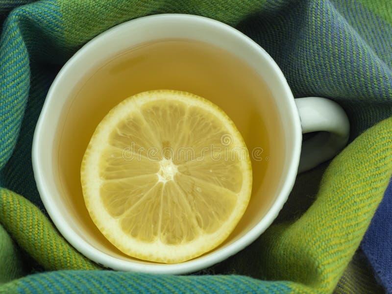 Tè verde con un cuneo di limone in una tazza, una sciarpa della lana delle tonalità verdi immagine stock libera da diritti