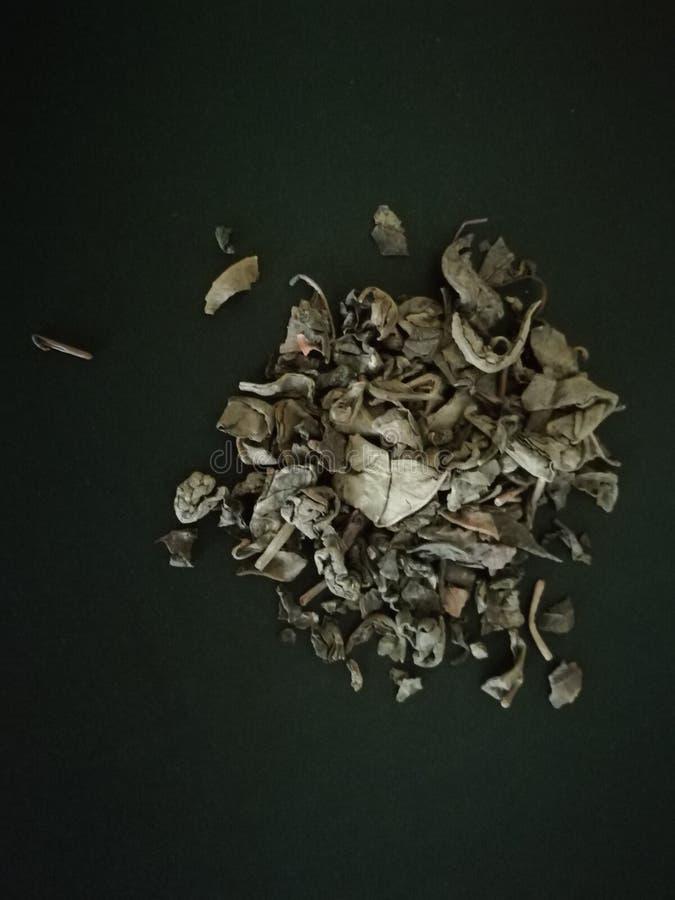 Tè verde nel fondo nero Copi lo spazio immagini stock libere da diritti