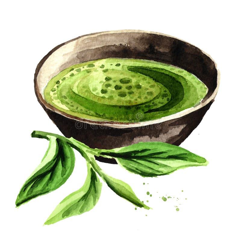 Tè verde organico di Matcha con le foglie di tè verdi Illustrazione disegnata a mano dell'acquerello, isolata su fondo bianco illustrazione vettoriale