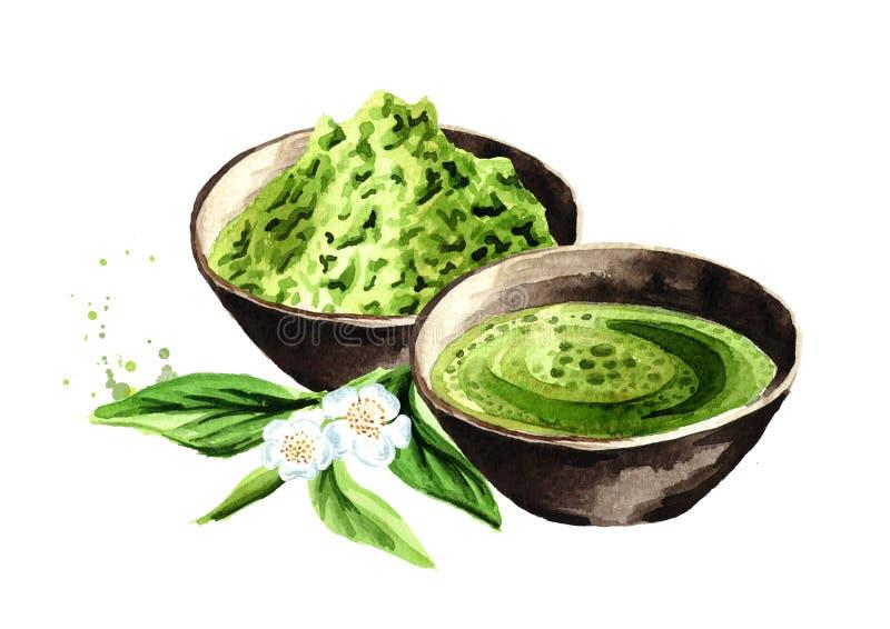 Tè verde organico di Matcha Illustrazione disegnata a mano dell'acquerello, isolata su fondo bianco illustrazione vettoriale