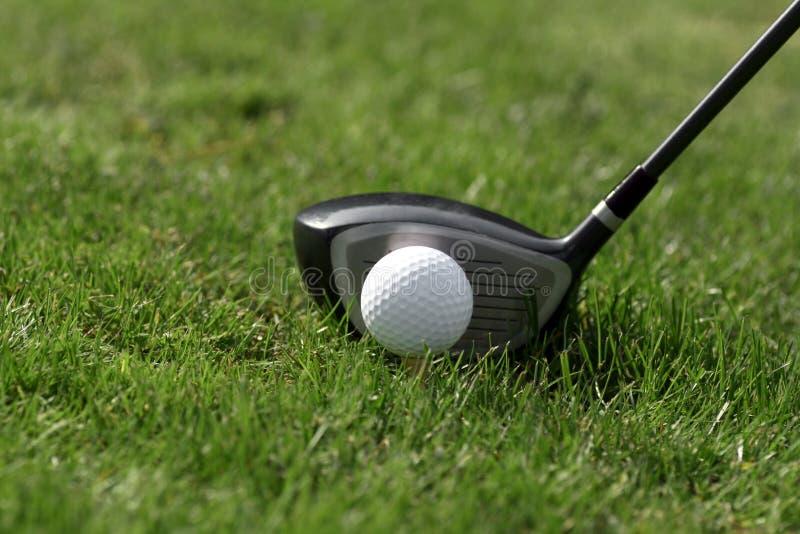Té de bille de golf - pilotez l'herbe photographie stock