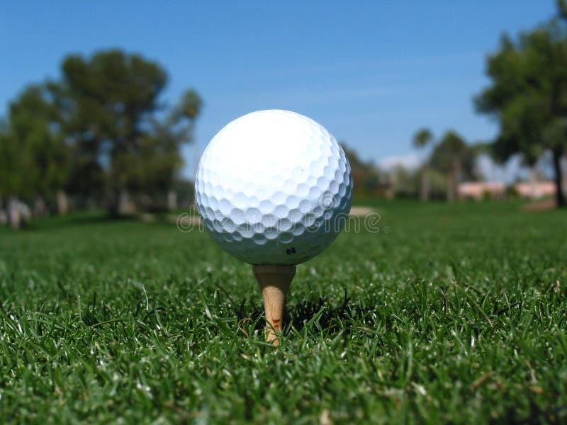Té de bille de golf vers le haut images stock