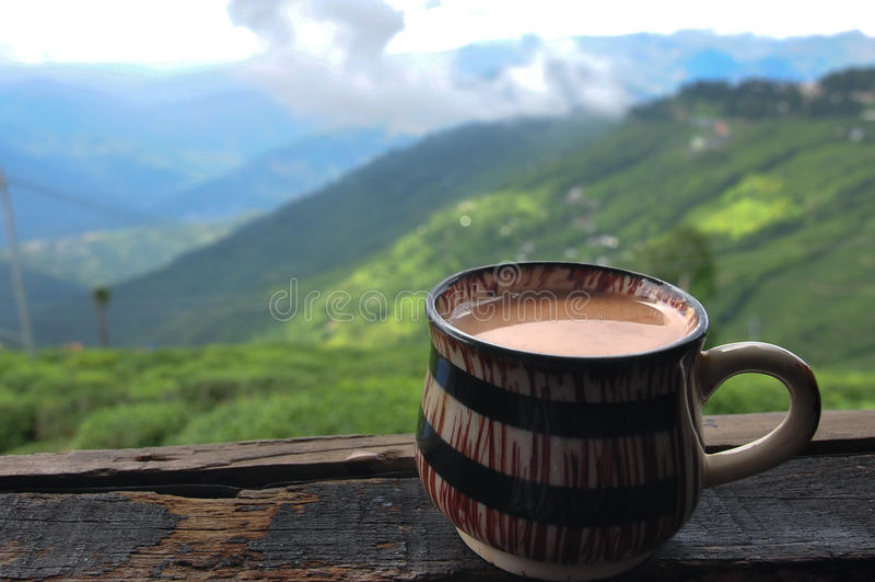 Té de Darjeeling fotografía de archivo