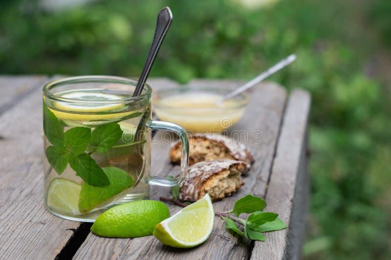 Té de la cal con la menta y miel y pan de jengibre en una tabla de madera fotografía de archivo libre de regalías