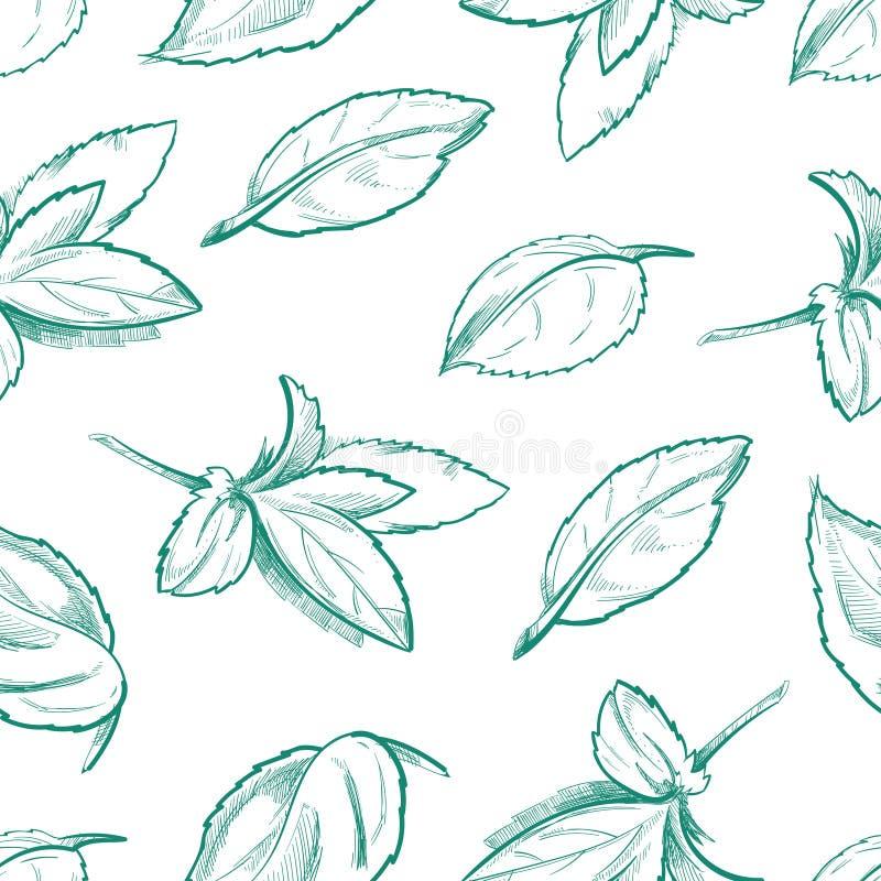 Té de la hierbabuena de Eco, hojas de menta fresca, fondo inconsútil del vector del mentol libre illustration