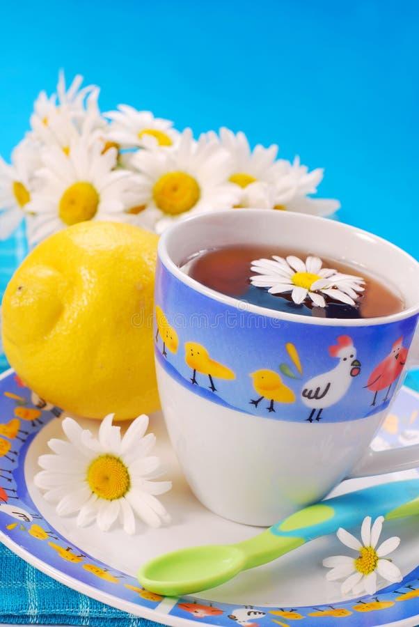 Té de la manzanilla y del limón para el niño foto de archivo