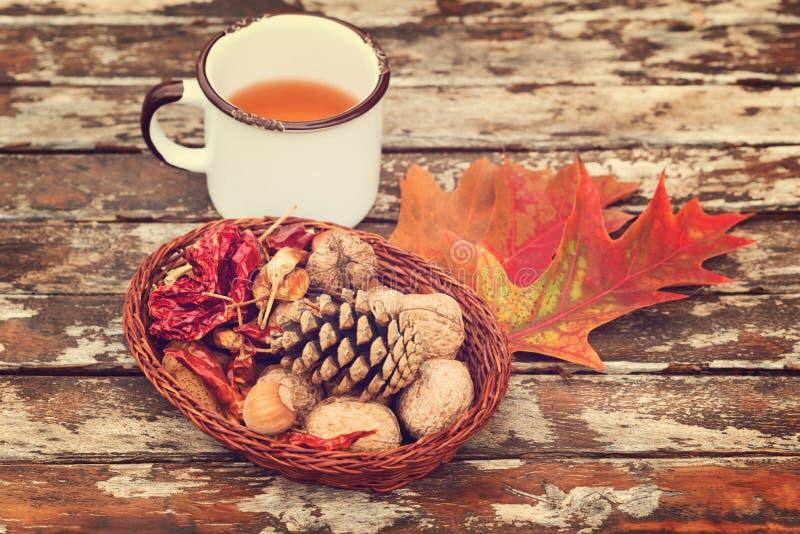Té del otoño en la taza blanca del vintage, pimientas de chile rojo, nueces, castaña y concha fotos de archivo libres de regalías