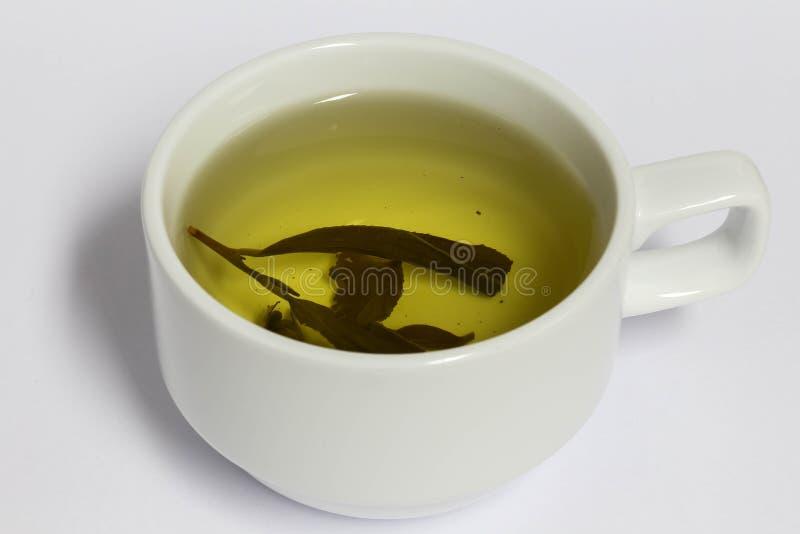 Té en la taza blanca, bebida sana, fotos de archivo