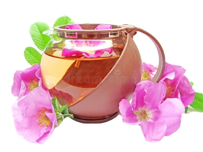 Té herbario con las flores color de rosa salvajes fotos de archivo libres de regalías