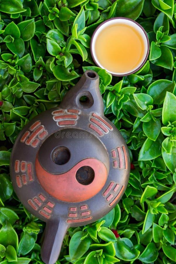 Té recientemente preparado en pote de cerámica de la taza en fondo verde del follaje Cocina asiática japonesa china Salud sana de imágenes de archivo libres de regalías