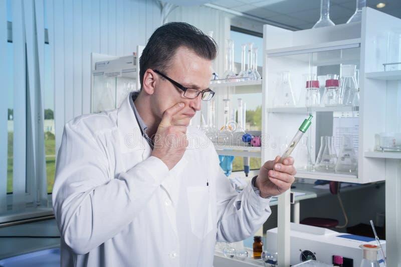 Técnico de laboratório observando o tubo de ensaio com o molde no laboratório imagens de stock royalty free