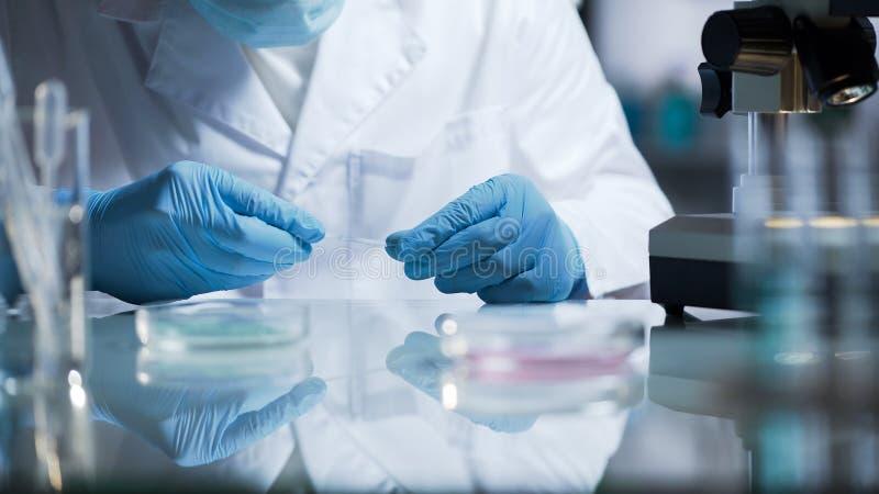 Técnico de laboratorio que prepara el vidrio con la sustancia bioquímica para el examen fotografía de archivo libre de regalías