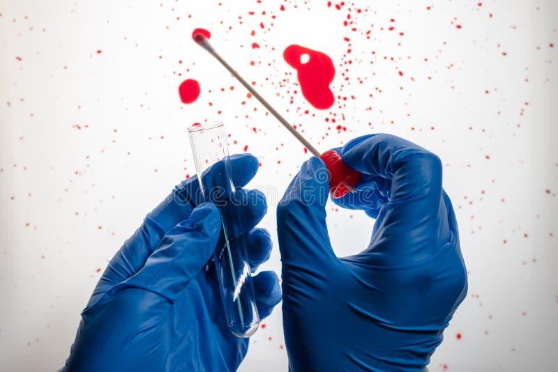 Técnico forense que recoge la muestra de la DNA de la mancha de sangre fotos de archivo libres de regalías