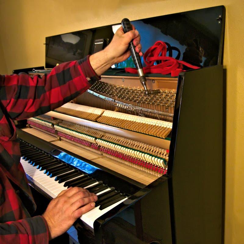 Técnico profissional do piano que joga chaves e que ajusta cordas com ferramenta fotografia de stock royalty free