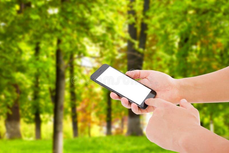 Téléphone et écran tactile de prise de main sur le fond brouillé de parc, faux  photographie stock libre de droits